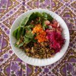 Vegan bowl quinoa, lentilles noires, épinards, carottes, radis, chou rouge